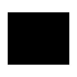 Fiat Professional Service